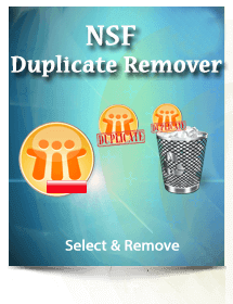 nsf duplicate remover box